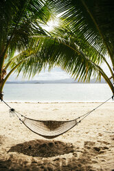 Philippines, Palawan, hammock and palms on a beach near El Nido - GEMF000054