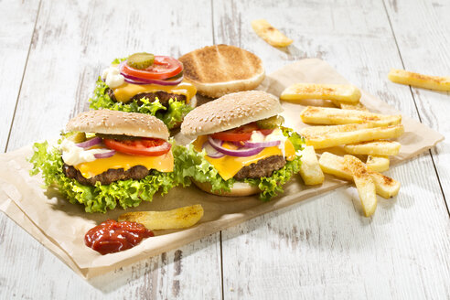 Homemade cheeseburgers with french fries - MAEF009732