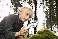 Little boy with magnifying glass in a forest - PDF000816