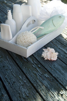 Tray with bath utensils and a snail-shell - GIS000004