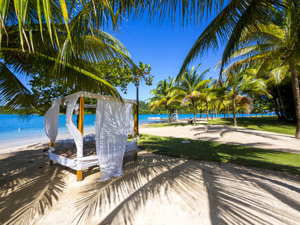 Jamaica, Port Antonio, Errol Flynn Marina, Sunbed under palms - AMF003828