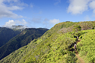 USA, Hawaii, Maui, woman hiking on Waihee Ridge Trail - BRF000996