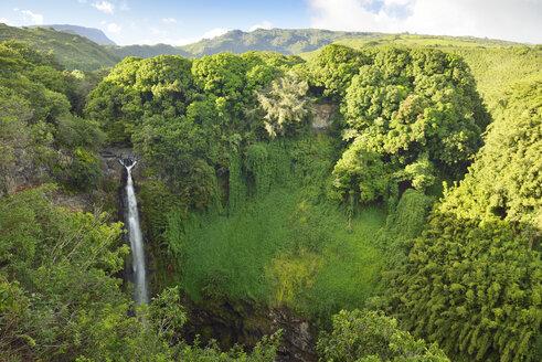 USA, Hawaii, Maui, Haleakala National Park, Makahiku Falls - BRF001100