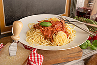 Spaghetti Bolognese on plate - CSTF000891