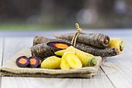 Organic Purple Haze and yellow carrots - JUNF000223
