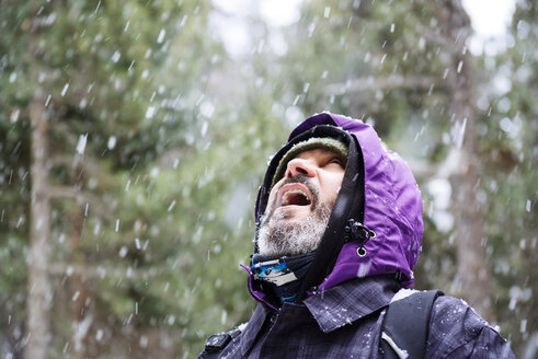 Bearded man looking up in the forest while snowing - GEMF000080