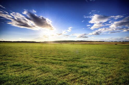 UK, Scotland, East Lothian, field at sunset - SMAF000314