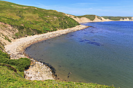 USA, California, Marin County, Point Reyes National Seashore, View to beach with sea elefants - FOF007776