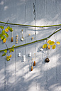 Twig with silver spoon, tea strainer and different rock candies - GIS000050