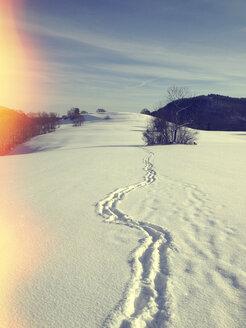 Germany, Baden-Wurttemberg, Swabian Alb, Winter morning - LVF003017