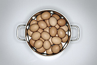 Brown eggs in pot - STKF001208