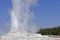USA, Wyoming, Yellowstone National Park, Castle Geyser erupting - RUEF001537