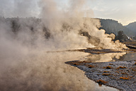 USA, Wyoming, Yellowstone National Park, rising steam at Firehole Lake - RUEF001543