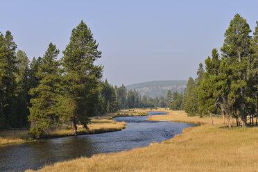 USA, Wyoming, Yellowstone National Park, Nez Perce Creek in autumn - RUEF001559