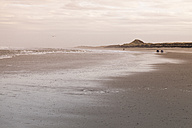 Germany, Langeoog Island, coastal landscape - WIF001571