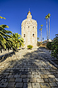 Spain, Andalusia, Sevilla, Torre del Oro - THAF001295