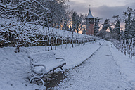 Germany, Baden-Wuerttemberg, Mainau Island, Vineyard and way to Tower Schwedenturm in winter - KEB000061