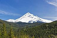 USA, Oregon, Mount Hood - FOF007827