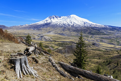 USA, Washington, Mount St. Helens as seen from  Johnston Ridge Observatory and damage in landscape from eruption - FOF007834
