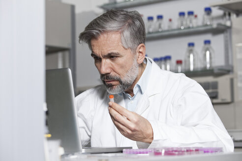 Scientist holding test sample at laptop in laboratory - RBF002570