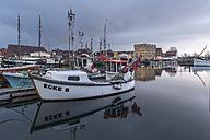 Germany, Eckernfoerde, fishing boats in harbor - KEB000008