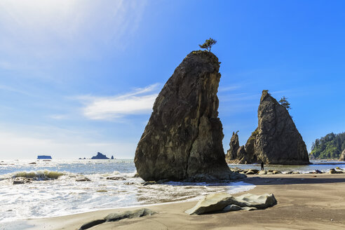 USA, Washington State, Olympic Peninsula, Olympic National Park, Pacific Ocean, Rock needles, Tourist at Rubby Beach - FOF007883
