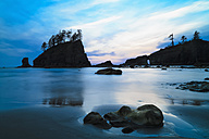 USA, Washington State, Olympic Peninsula, Olympic National Park, Pacific Ocean, Second Beach with rock islands and rock needles in the evening - FOF007868