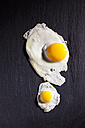 Fried quail egg and fried hen's egg on slate - CSF025004