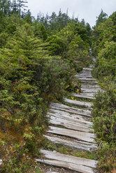 Canada, British Columbia, Vancouver Island, Nuu-Chah-Nulth Trail - KEBF000025