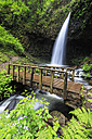 USA, Oregon, Multnomah County, Columbia River Gorge, Latourell Falls, wooden bridge - FOF007869