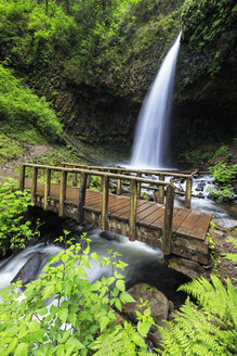 USA, Oregon, Multnomah County, Columbia River Gorge, Latourell Falls, wooden bridge - FOF007869