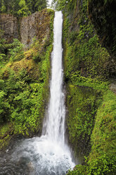 USA, Oregon, Hood River County, Columbia River Gorge, Tunnel Falls - FOF007872