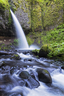 USA, Oregon, Columbia River Gorge, Multnomah County, Ponytail Falls - FOF007915