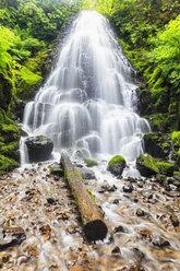 USA, Oregon, Multnomah County, Columbia River Gorge, Fairy Falls - FOF007897