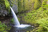 USA, Oregon, Columbia River Gorge, Multnomah County, hikers at Ponytail Falls - FOF007913