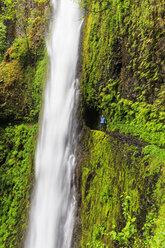 USA, Oregon, Hood River County, Columbia River Gorge, Eagle Creek Trail, Female tourist at Tunnel Falls - FOF007894