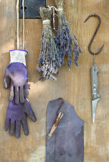 Bunch of lavender,  gardening gloves, knife, wire and hooks in front of wood - GISF000069