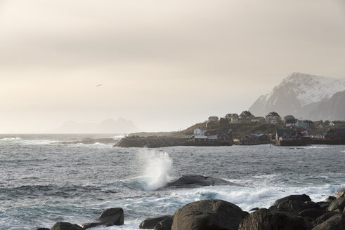 Norway, Lofoten, coast by Tind - MKFF000183