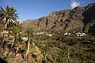 Spain, Canary Islands, La Gomera, Valle Gran Rey, View to mountain village and palm trees and terrace fields - PCF000122