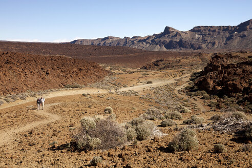Spain, Canary Islands, Tenerife, hikers at Teide National Park - PCF000124