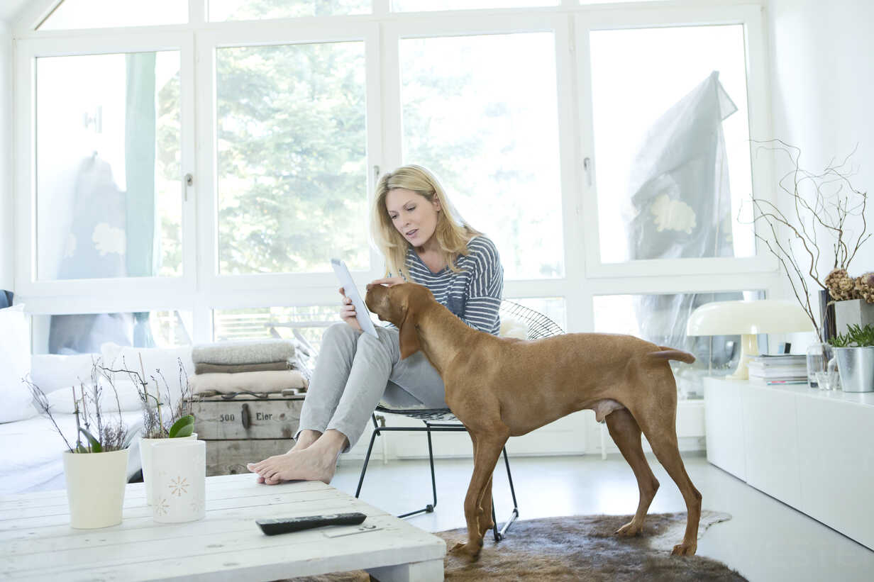 Woman with her dog and digital tablet at home - MAEF010012 - Roman Märzinger/Westend61
