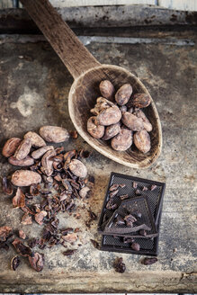 Crushed and whole cocoa beans and dark chocolate - SBDF001722