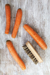 Four carrots and a vegetable brush - EVGF001580