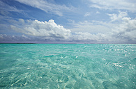 Caribbean, Netherlands Antilles, Bonaire, seascape at Lac Bay - MRF001614