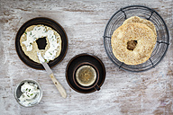 Breakfast, homemade bagels - EVGF001429