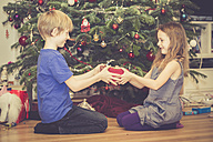 Boy giving his little sister Christmas present - SARF001620