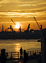 Germany, Hamburg, Silhouettes of harbour cranes at sunset, Koehlbrand bridge in the background - KRPF001410