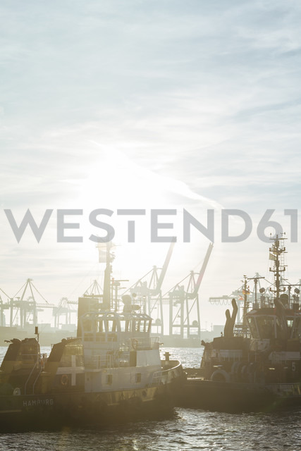 Germany, Hamburg, Port of Hamburg, Harbour cranes and towboats at sunset - KRPF001418 - Kristian Peetz/Westend61