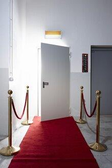 Red carpet in front of open door - EDF000137