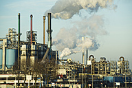 Netherlands, Rotterdam, Industrial area - MYF000981